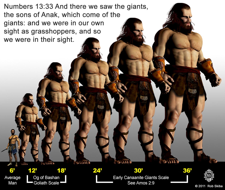 GiantScales2